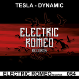 Dynamic by Tesla mp3 download