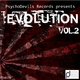 Various Artists  - Evolution Volume 2