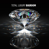Total Luxury Bigroom by Various Artists mp3 download