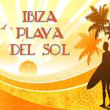 Ibiza Playa Del Sol by Various Artists mp3 download
